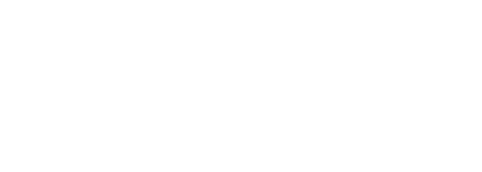 Bonzer - For the remarkable ones